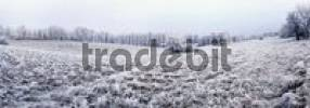 Thumbnail Panoramic view of a frost-covered landscape, Eichstaett, Bavaria, Germany, Europe