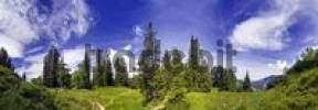 Thumbnail Panoramic view of a mountain forest under a blue sky near Kreuth, Bavaria, Germany, Europe