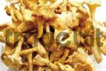 Thumbnail Fresh Golden Chanterelle mushrooms Cantharellus cibarius