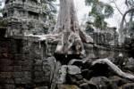 Thumbnail Jungle overgrowing Ta Trohm Temple, Bayon Temple, Angkor Thom, Cambodia, Southeast Asia