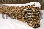 Thumbnail wood-pile in snow