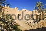 Thumbnail palm garden at Ghadames, Ghadamis, Unesco world heritage site, Libya