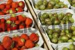 Thumbnail freshly picked organically-grown strawberries and gooseberries in baskets