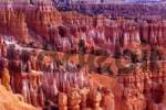 Thumbnail Amphitheater, Bryce Canyon National Park, Utah, USA