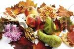Thumbnail Apples, pears, chrysanthemums and corncob with colourful autumn leaves