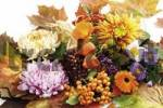 Thumbnail Autumn decoration: firethorn berries, beautyberries, chrysanthemums, Chinese lanterns, autumn asters, pot marigolds and colourful autumn leaves