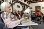 Thumbnail Elderly woman visited by a dog at a nursing home