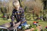Thumbnail seven year old boy are planting flowers in spring