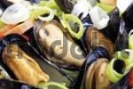 Thumbnail Rhenisch blue mussels