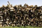 Thumbnail Woodpile, stacked firewood