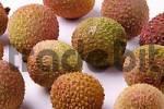 Thumbnail Litchi Litchi chinensis