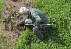Thumbnail Gardener