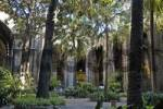 Thumbnail cloister of the Cathedral, arcade, convent, Barcelona, Catalonia, Spain