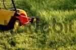Thumbnail Lawn mower in a garden