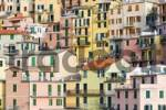 Thumbnail Facades of houses nestled together in Manarola, Liguria, Cinque Terre, Italy, Europe