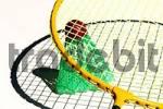 Thumbnail badminton