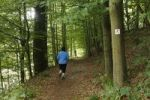 Thumbnail Jogger on a marked hiking path, Koenigsweg, Kings Way, near Bad Brueckenau, Rhoen, Lower Franconia, Bavaria, Germany, Europe