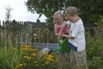 Thumbnail Girl, 5, and boy, 8, watering flowers in a garden