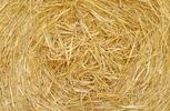 Thumbnail Bale of straw