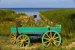 Thumbnail Flower cart in front of Lake Peipsi, Kasepee, Peipsu jaerv, Estonia, Baltic States, Europe