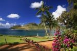 Thumbnail Kalapaki Beach with palm trees and a golf course behind the Marriott Resort, Kukui Point, Lihue, Kauai Island, Hawaii, USA