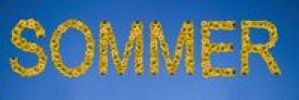 Thumbnail Sommer, written with letters made of sunflowers