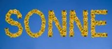 Thumbnail Sonne, written with letters made of sunflowers