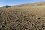 Thumbnail Desert and steppe, Aimak Bayan Ulgi, Altai, Mongolia, Asia