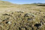 Thumbnail Chuya Steppe, Saylyugem Mountains, Altai Republic, Siberia, Russia, Asia