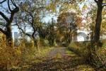 Thumbnail way to the castle Weidelsburg near Wolfhagen west of Kassel Hessen Germany in the Naturepark Habichtswald