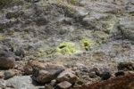Thumbnail Sulfur fumaroles in the Volcanoes National Park, Kilauea Volcano, Big Island, Hawaii, Hawaii, USA