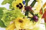 Thumbnail Salad of edible flowers, Pansies, Clover, Camilla, Zucchini flowers, Golden Marguerite, Arugula or Rocket and Lettuce