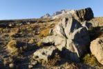 Thumbnail Lava bombs on the south flank of Mount Hood Volcano, Cascade Range, Oregon, USA