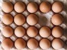 Thumbnail Egg carton lacking one egg, symbolizing lack