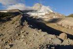 Thumbnail Eastern flank of Mount Hood volcano with Elliot Glacier, Cooper Spur Trail, Cascade Range, Oregon, USA