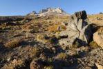 Thumbnail Lava bomb on the southern flank of Mount Hood volcano, Cascade Range, Oregon, USA