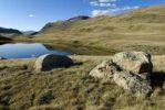 Thumbnail Boulder in expansive grass land, Bujljukem Valley, Saljugem, Sailughem, Saylyugem Mountains, Tschuja Steppe, Altai Republic, Siberia, Russia, Asia