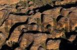 Thumbnail Aerial view of the Bungle Bungles Purnululu National Park, Western Australia