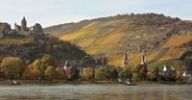 Thumbnail Autumnal town panorama of Bacharach am Rhein along the Rhine River, UNESCO World Heritage Site, Middle Rhine Valley, Rhineland-Palatinate, Germany, Europe