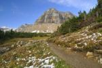 Thumbnail Hiking trail at Logan Pass, main attraction of the Glacier National Park, Montana, USA, North America
