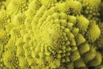 Thumbnail Romanesco broccoli, closeup