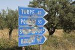 Thumbnail Blue traffic signs full of bullet holes, Sardinia, Italy, Europe