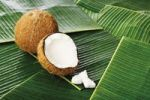 Thumbnail Coconuts Cocos nucifera, and chunks of coconut on banana leaves