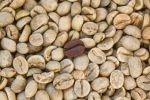 Thumbnail Unroasted coffee beans and one roasted coffee bean