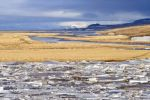 Thumbnail Ice floes on the Midfjardara River / bei Hvammstangi, Region Norðurland vestra, Iceland, Europe