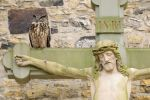 Thumbnail Eagle Owl (Bubo bubo) sitting on a Crucifix / Kreuzgang des Osnabrücker Doms, Osnabrück, Lower Saxony, Germany, Europe