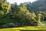 Thumbnail Old huts, rice paddies, Northern Thailand, Thailand, Asia
