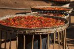 Thumbnail Chilli (Capsicum sp.), red chilli peppers drying in the sun, northern Thailand, Thailand, Asia