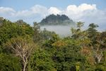 Thumbnail Landscape with mist, forest, jungle, northern Thailand, Thailand, Asia
