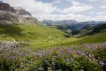 Thumbnail Sella Group seen from Pordoi Pass, Dolomites / Pordoijoch, South Tyrol, Italy, Europe